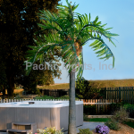 Natural LED Lighted Palm Trees | Products | Pacific Lights Inc.